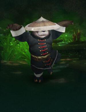 پت Pandaren-Monk